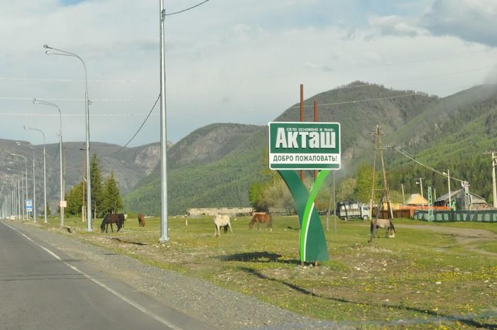 Село Акташ в Республике Алтай