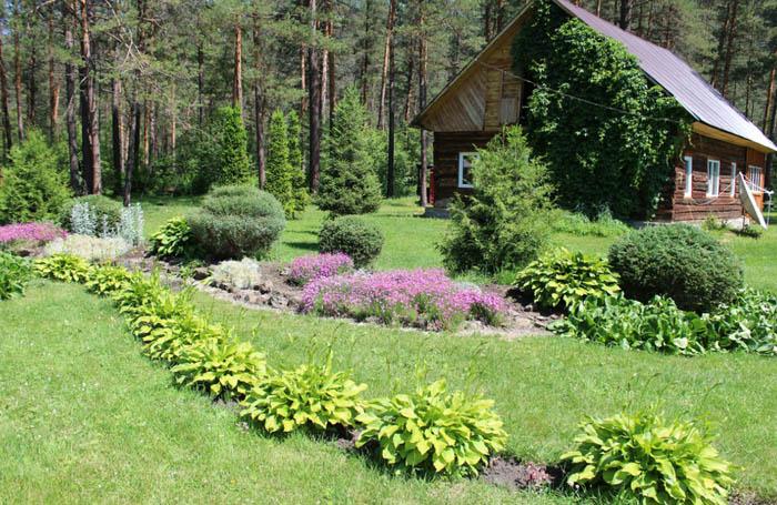 Горно-Алтайский ботанический сад «Чистый луг»